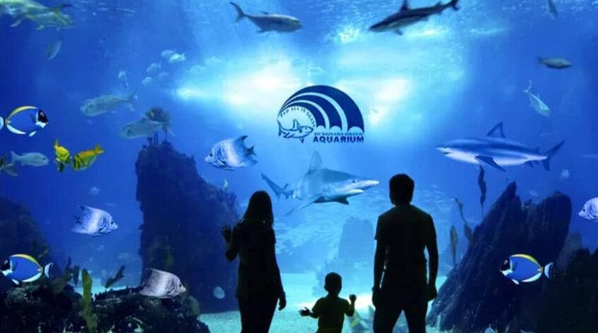 Visit Grandaquarium in Hurghada with KarexTours