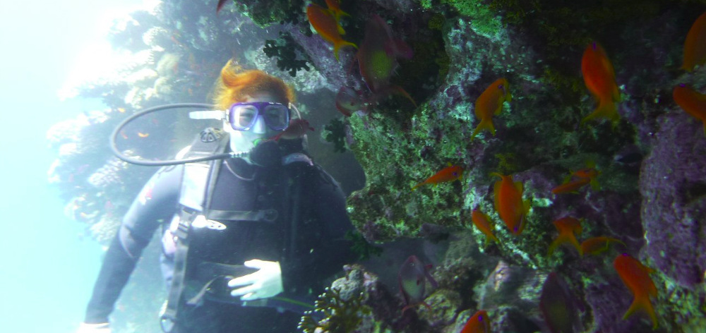 Diving in Hurghada with dinner and transfer